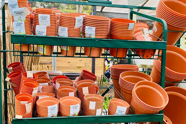 Image of Pots & Planters at Youngs Nurseries